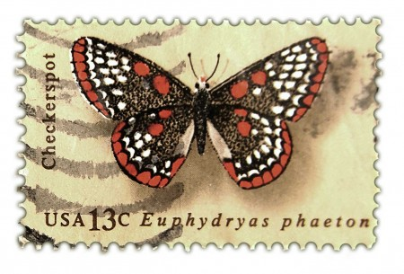 Vintage Postage Stamp Art - 1977 Butterfly Issue Checkerspot