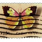 Vintage Butterfly Postage Stamp Art from the Mid 1970's