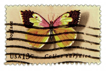 Vintage Postage Stamp Art - 1977 Butterfly Issue Dogface