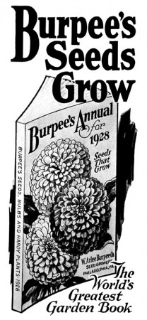 Vintage 1928 Burpee Seeds Advertisement