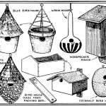 Vintage Bird Houses Clip Art