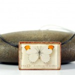 Butterfly Postage Stamp Jewelry – Reader Feature