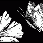 Vintage Flowers and Butterfly Engraved Illustration