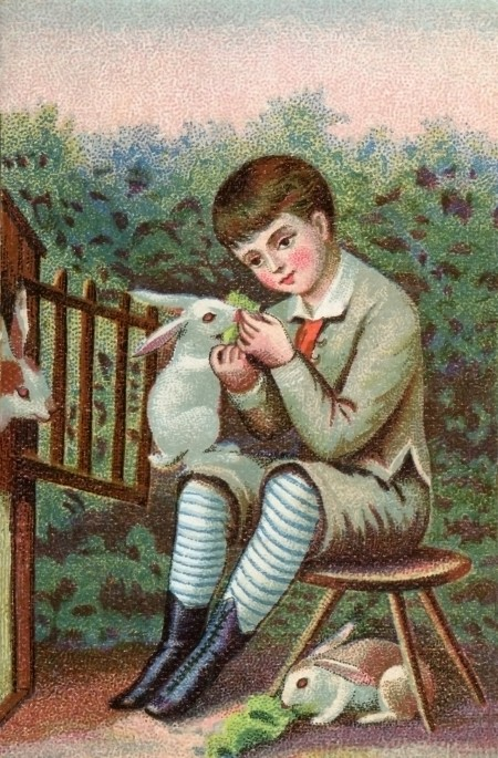 High Resolution Image of a Victorian Boy with Easter Bunnies - Click for downloadable image