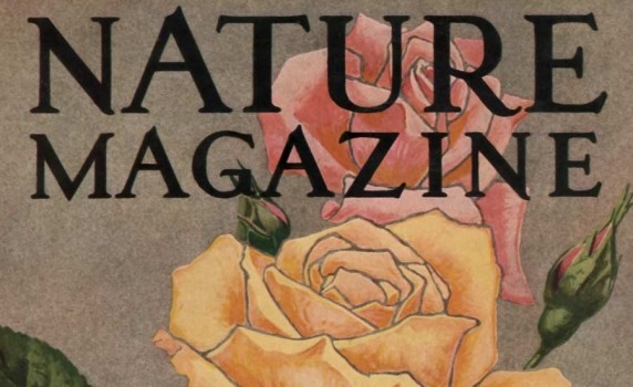 nature-mag-cover-roses