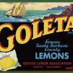 Vintage Goleta Lemons Fruit Crate Label