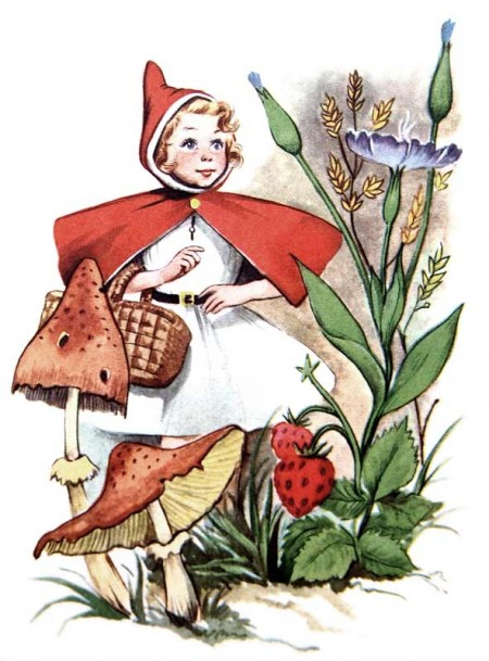 Vintage Red Riding Hood Children's Book Illustration