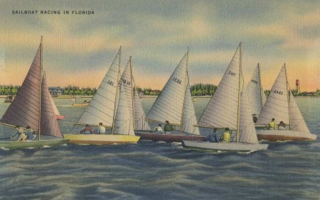 Vintage Florida Postcard Sailboat Racing - Click for larger image to print