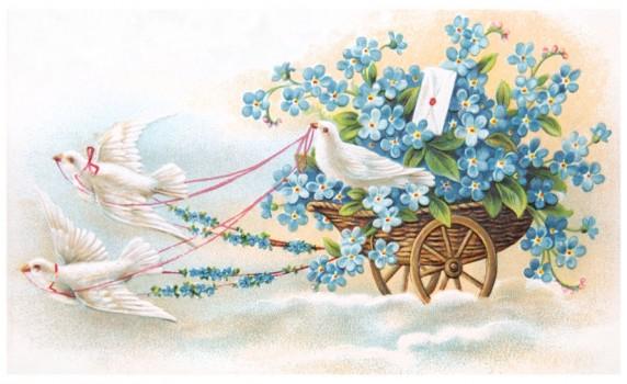 Vintage Birds Valentine Postcard