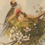 Antique Painting of Two Spring Birds in a Nest with Flowers
