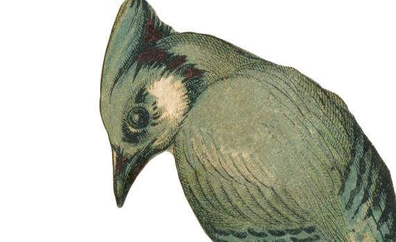 Vintage Birds Vintage Fangirl Part 2