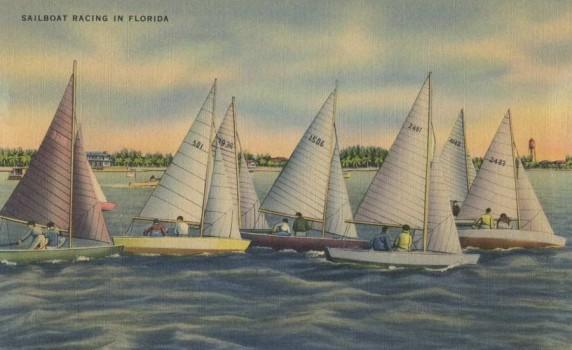 Vintage Florida Postcard Sailboat Racing - Click for larger image to print
