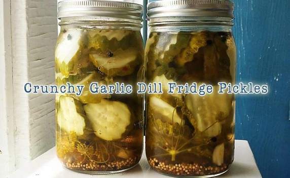 Crunchy Garlic Dill Fridge Pickle Recipe