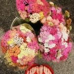 Still Life: Tiptoe Through the Wildflowers
